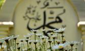 Kur'ân-ı Kerîm'i Gönül Sultânımız Efendimiz'in Aynasından Okumak