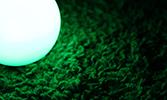 Yeşil Halıda Bir Saniyelik Bilinç Akışı