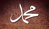 Annemarie Schimmel'in Hz. Muhammed Kitabı Türkçe'de
